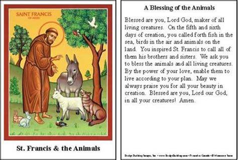 saint francis  assisi prayer  animals blessing