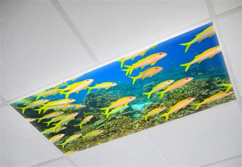 Fluorescent Ceiling Light Covers Fluorescent Light Cover Decorative Light Covers Octo Lights