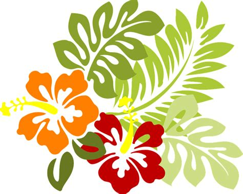 tropical pattern png free vector graphic flower tropical leaves hibiscus