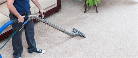 cheap sofa cleaning cheap carpet cleaner services carpet nrtradiant