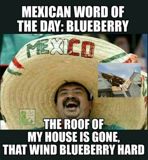 Mexican Meme - mexican word of the day blueberry taco taco pinterest