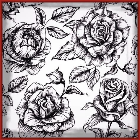 imagenes para enamorar y colorear fascinantes fotos de rosas para enamorar imagenes de rosa