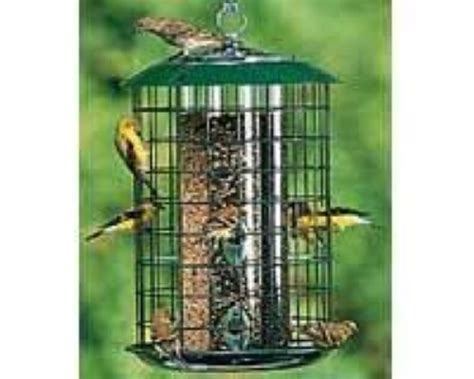 duncraft metal safe haven bird feeder squirrel proof ebay
