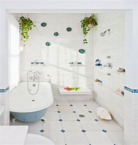 bathroom hanging plants hanging plants and soil less vegetation for green homes