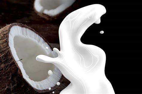 Welche Haustür Ist Die Beste by Welche Ist Die Beste Pflanzenmilch Wiressengesund