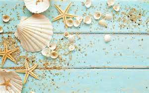 starfish shells decoration pebbles for phone