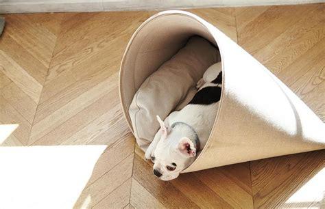 cucce per gatti da interno cucce per gatti e per cani di design ed eco friendly