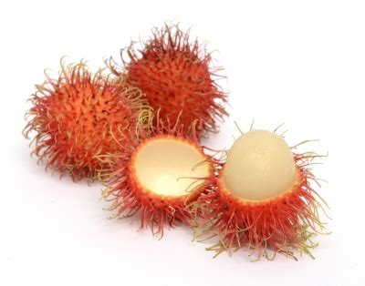 fruit similar to lychee what is the difference between the lychee rambutan and