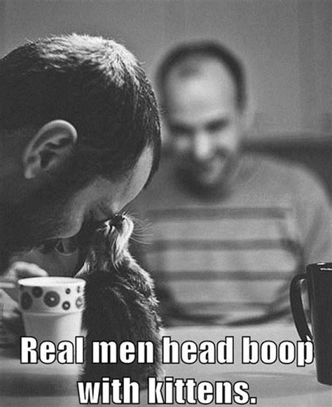A Real Man Meme - real men head boop with kittens