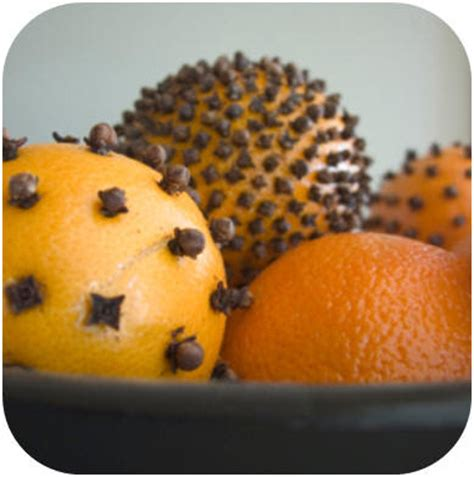 where to buy oranges with cloves for christmas my sweet oranges cloves fragrant pomanders