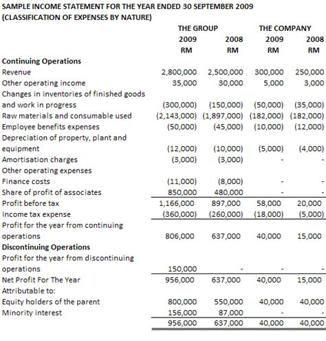 9 financial statements example   Financial Statement Form