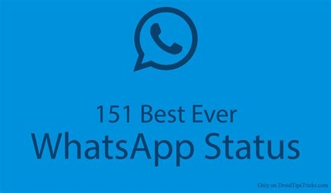 whatsapp status best 151 best whatsapp status