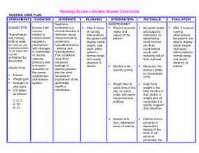 hyperlipidemia care plan