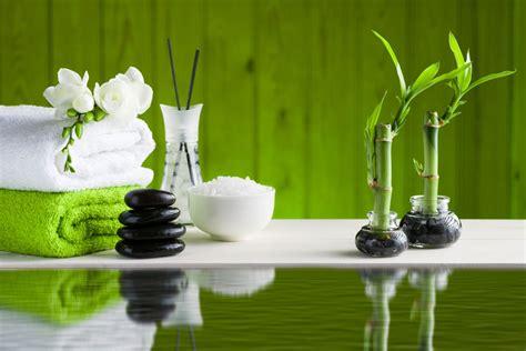 imagenes de jardines segun el feng shui c 243 mo fortalecer la salud y la familia seg 250 n el feng shui