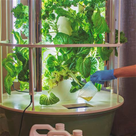 discover aeroponics tower garden aeroponic system