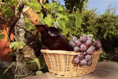 italian wine gift basket ideas lovetoknow