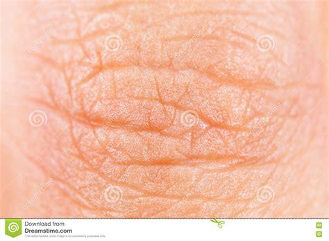 human skin texture stock photo image 76786839 finger skin texture stock photo image 71700863
