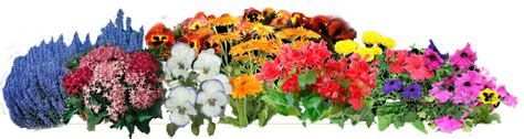 Flower Garden Png Index Of Catherinegreen Cgreen Createnew 12415 Links