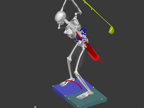 biomechanics of golf swing sri investigates biomechanics of golf spine research