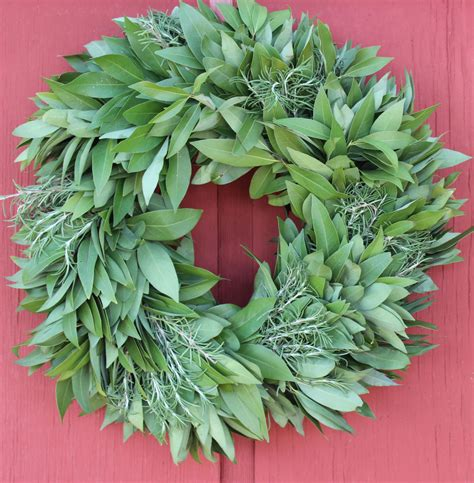Bayleaf Wreath Bay Leaf Wreath With Rosemary Wreath Fresh Wreath