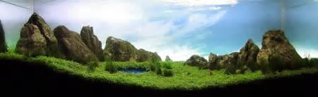 Aquascapes Designs Ubiquity Life 水草水槽のデザインが 想像以上に奇麗だった