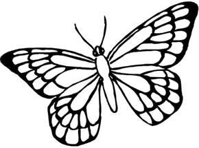 butterfly to color butterfly coloring pages bestofcoloring