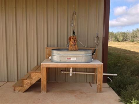 best 20 dog bath tub ideas on pinterest