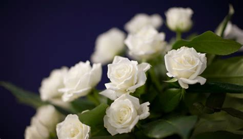 Best Flowers For Funeral by What Is The Best Funeral Flower Etiquette How To Write