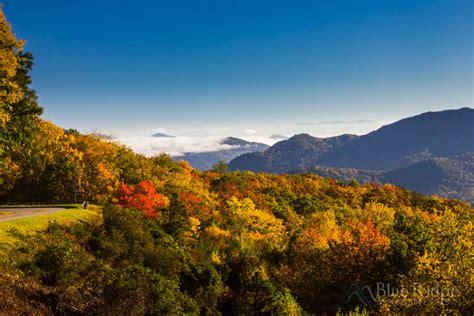 fall colors 2017 fall foliage 2017 forecast and guide blue ridge mountain life