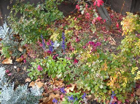 Fall Flower Gardens Best 25 Autumn Garden Ideas On Diy Candles For Fall Autumn Fall And Autumn Nature