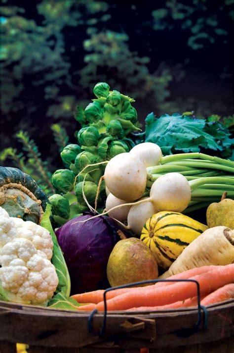 grow   fall garden vegetables