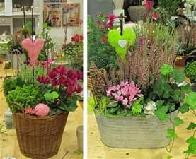 herbstbepflanzung garten 6 leuchtende herbst pflanzen f 252 r garten und blumenk 228 sten