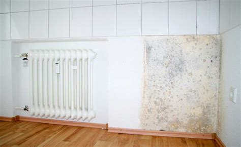 stop mould in bedroom how to stop d in small bedroom www indiepedia org