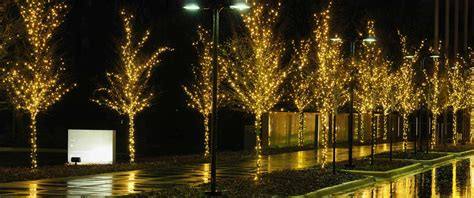 whcl christmas light photo gallery