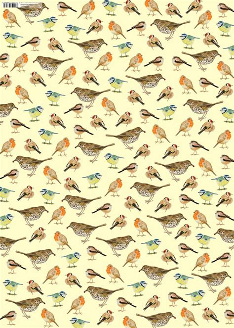 Birds With Paper - garden birds gift wrap paper