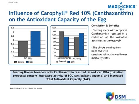 Carophyll Dsm 10 maxichick produce more better