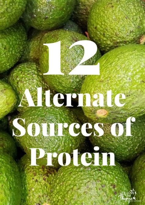 Wst 9565 Weather 12 alternate sources of protein the o jays plant based