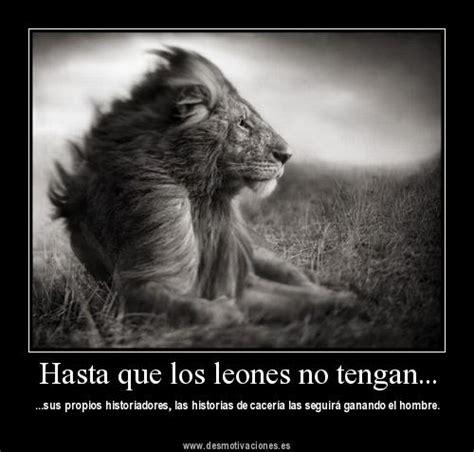imagenes de leones con frases imagui frases con leones imagui
