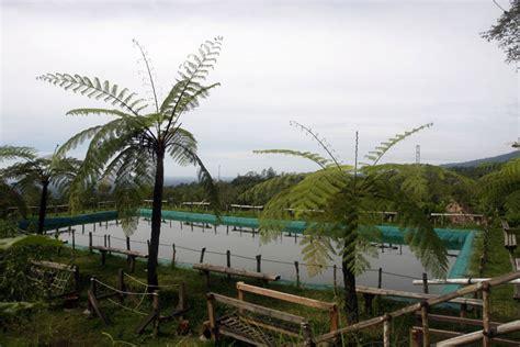 Alat Pancing Ikan Air Tawar kolam pancing