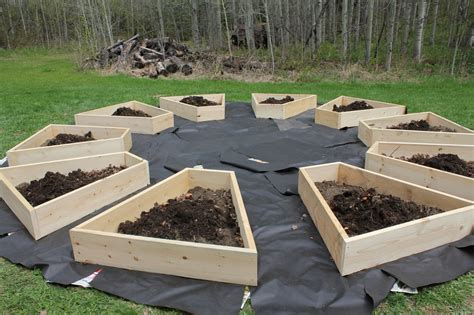 raise bed raised beds cabinorganic