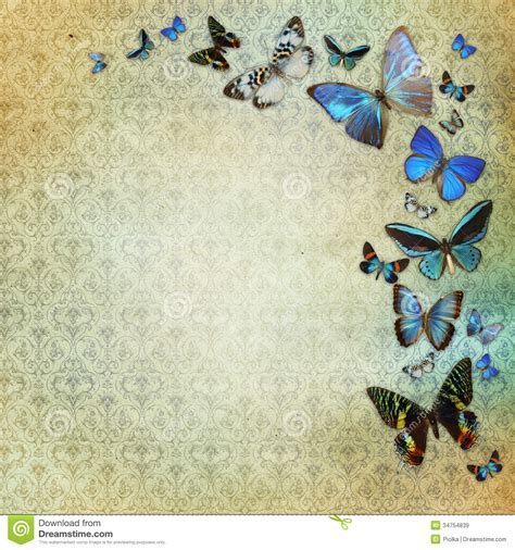 butterfly old vintage free ppt backgrounds for your vintage shabby chic background royalty free stock images