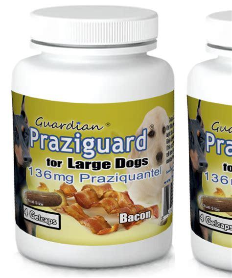 praziquantel for dogs guardian web store
