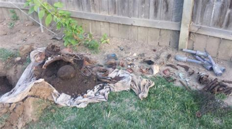 Backyard Finds by 10 Strange Things Found In Their Backyard