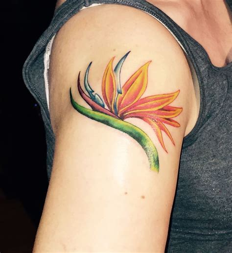 bird of paradise tattoo bird of paradise it tattoos