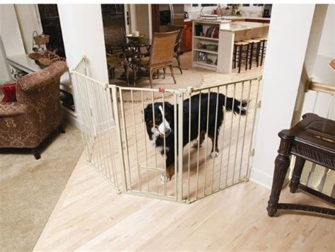 carlson pet gate  protection   pets