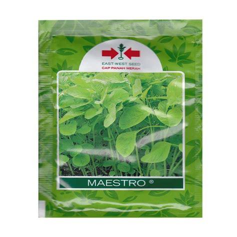 Murah Benih Bayam Hijau Maestro jual panah merah maestro bayam hijau benih tanaman 26 000 biji harga kualitas