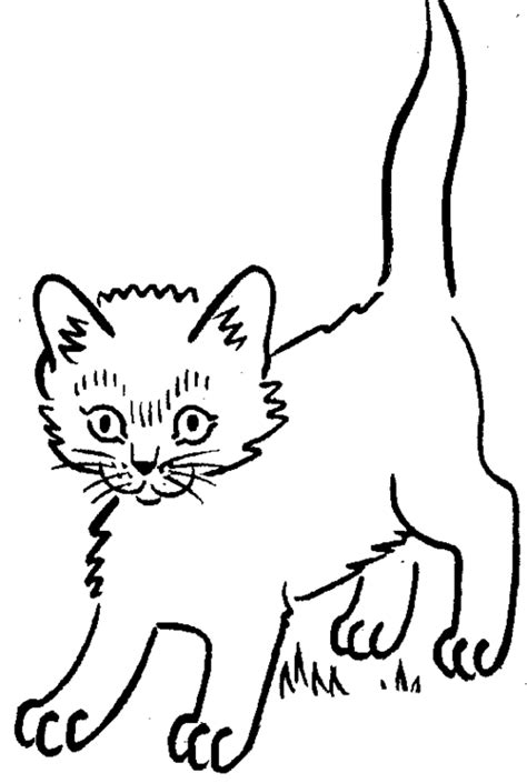 Kitten Coloring Pages | Coloring pages for Girls | #3 Free ... Eagle Coloring Pages Free