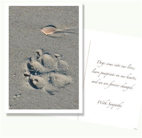 Pet Sympathy Card Template by Sympathy Cards For Loss Of Or Cat Speak Cards