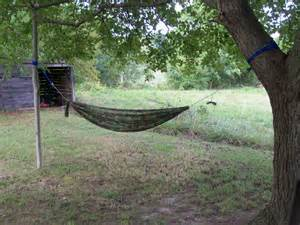 One Tree Hammock Setup one tree setup hammock forums gallery