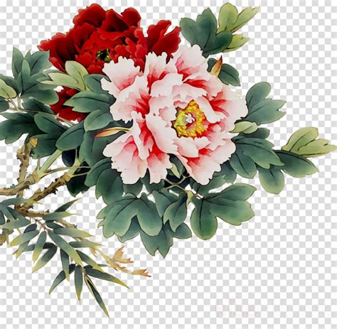 peony clipart flower painting peony flower painting transparent